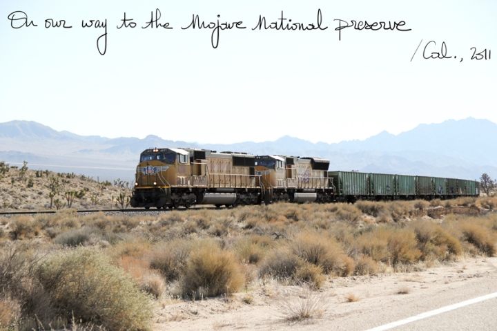 Mojave National Park, A Piece of Glam