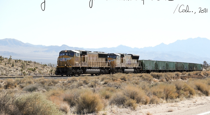 Mojave National Park, The French Dilettante
