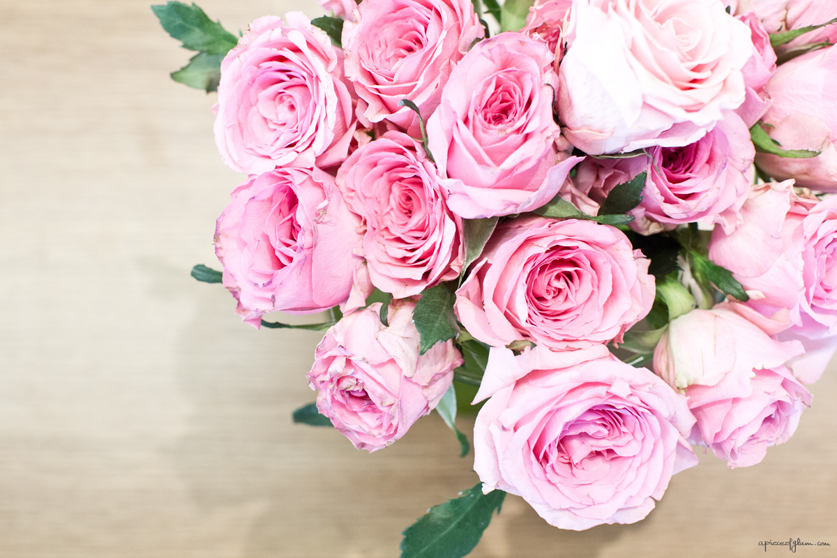 Roses , The French Dilettante
