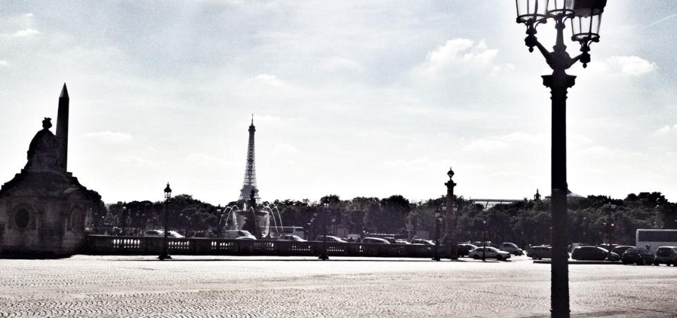 The French Dilettante, Paris